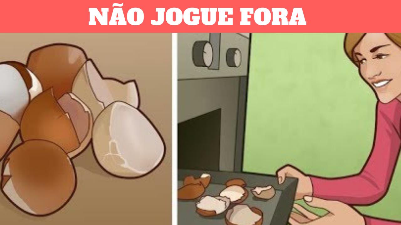 NÃO JOGUE FORA SUAS CASCAS DE OVO